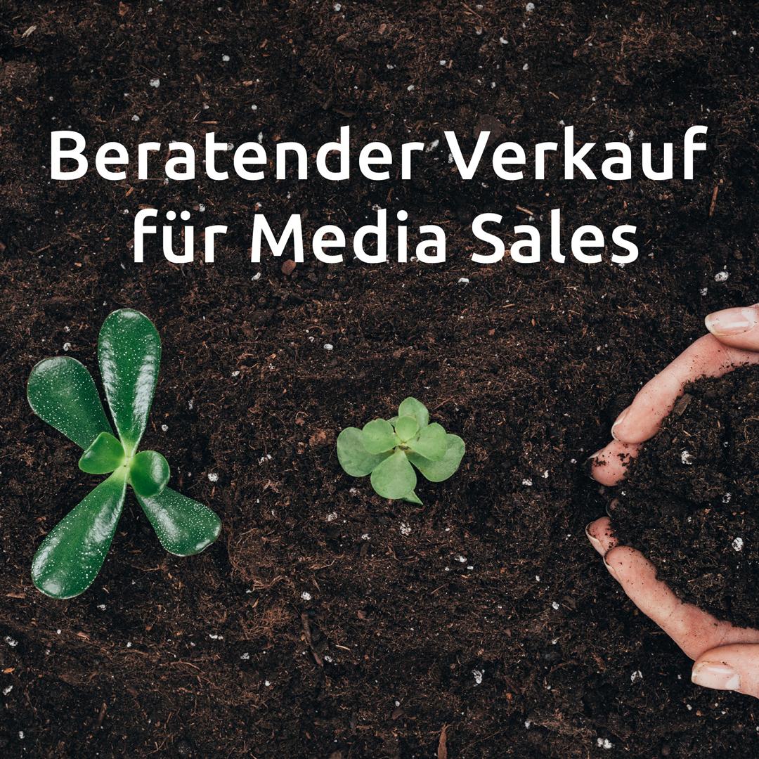 Artikel-10_Beratender-Verkauf-für-Media-Sales