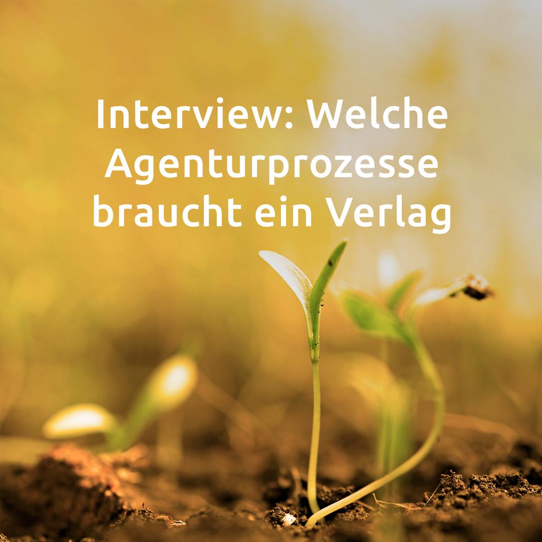 Artikel-15_Welche-Agenturprozesse-braucht-ein-Verlag