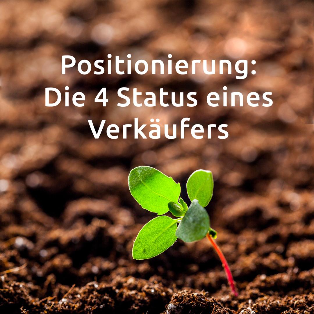 Artikel-8_Positionierung-Die-4-Status-eines-Verkäufers